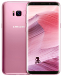 Samsung Rose Pink Galaxy S8+ Repair